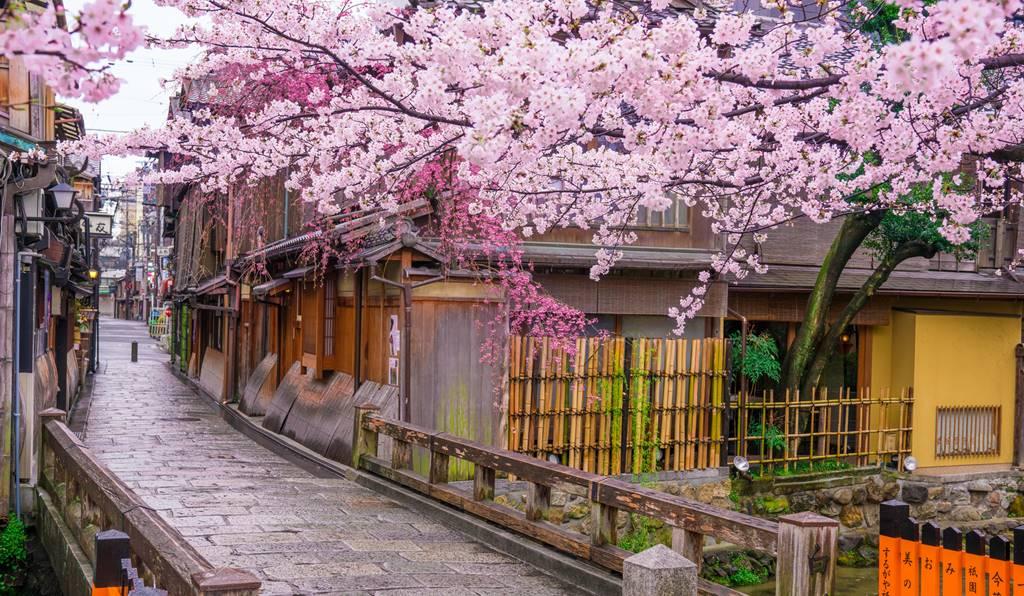 京都花街からの名付け